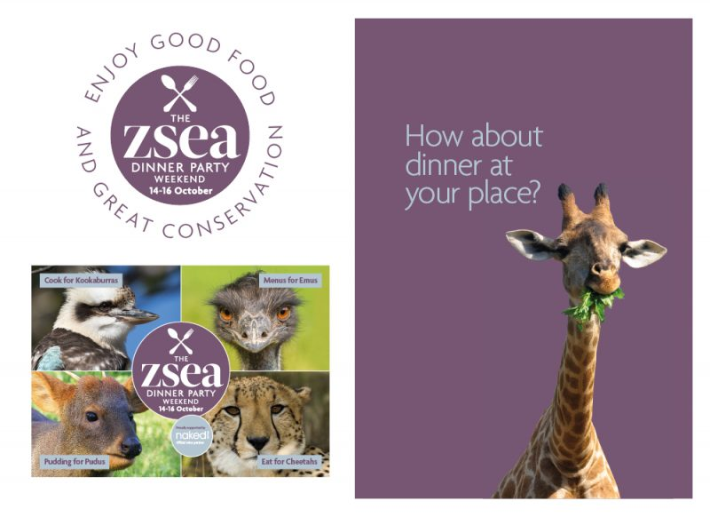Image of example communications for dinner party fundraising campaign