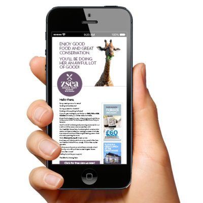Image of fundraising campaign on mobile screen