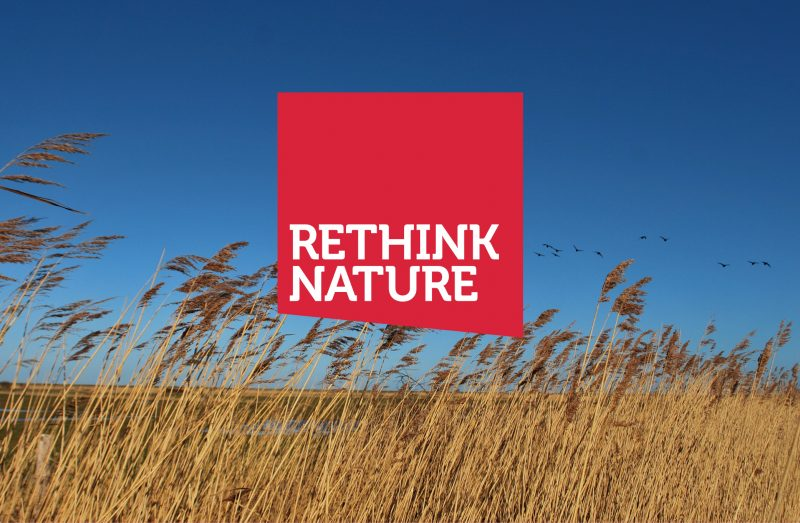Rethink Nature - The Point