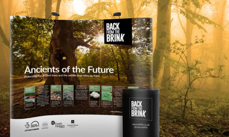Image of Back from the Brink Ancients of the Future pop up banner stand