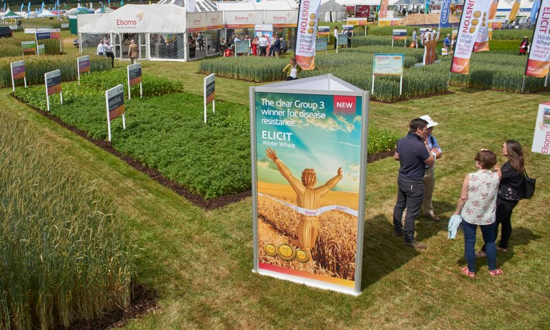 Image of Elsoms stand at Cereals 2018